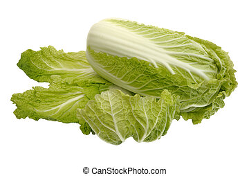 Beijing cabbage, isolated