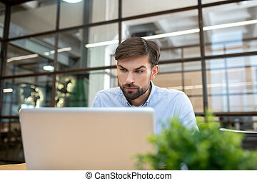 Bearded man in a blue shirt working on the laptop and looking concentrated