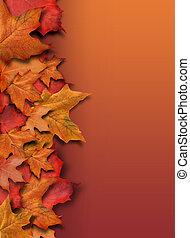 beira alaranjada, fundo, copyspace, outono