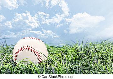 beisball, en, pasto o césped