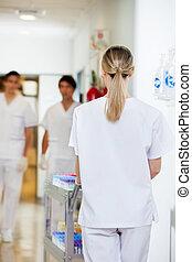 bejárat, orvosi, rámenős, kordé, technikus, kórház