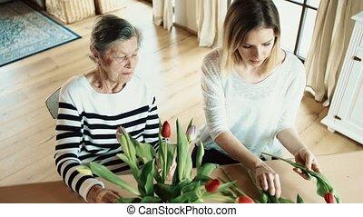 bejaarden, grootmoeder, met, een, volwassene, kleindochter,...