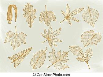 beklæde, leaves.