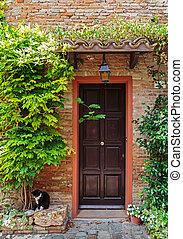 belépés, öreg, házimacska, bejárati lépcső, olasz