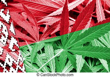belarus, fondo., droga de marihuana, legalization, bandera, policy., cannabis