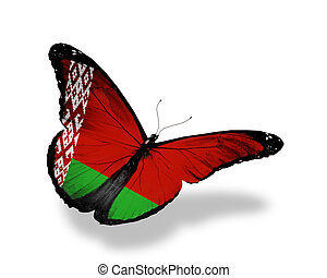 Belarussian flag butterfly flying, isolated on white background