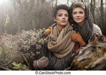 belas-artes, foto, de, um, dois, mulheres bonitas