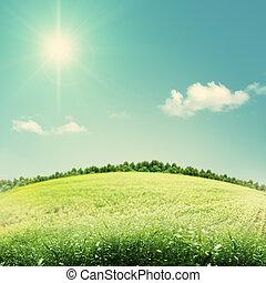 beleza, experiências sazonais, com, colinas verdes, sob, céus azuis
