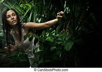 beleza, morena, jovem, floresta, chuva, excitado