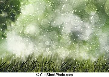 beleza natural, espaço, fundos, outonal, desenho, chuva, cópia, seu