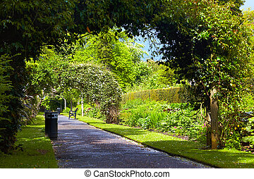 Belfast Botanic Gardens - Alley in Belfast Botanic Gardens,...