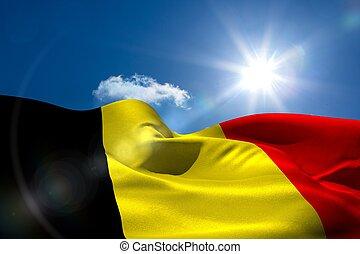 belga, bandera nacional, debajo, soleado, cielo