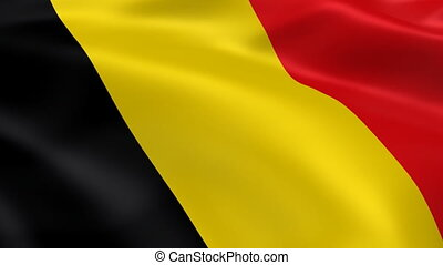 Belgian flag in the wind