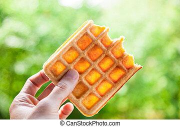 Belgian Waffle - Hand holds the half-eaten Belgian waffle....