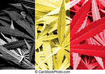 belgien kennzeichen, auf, cannabis, hintergrund., droge, policy., legalization, von, marihuana