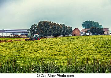 belgique, ferme, région, paysage