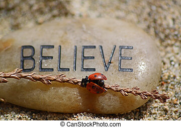 a rock written with believe in black letters and a bright red ladybug crawling on it.