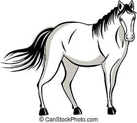 beliggende, sagte, hest