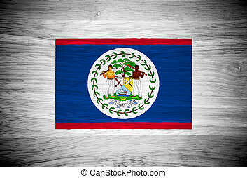 Belize flag on wood texture