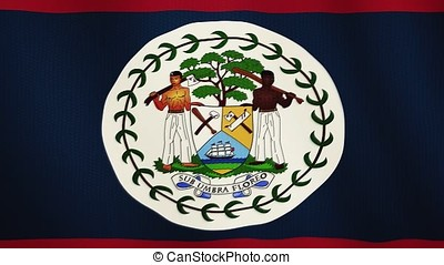 Belize flag waving animation. Full Screen. Symbol of the country.