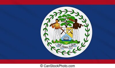 Belize flag waving cloth background, loop