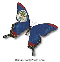 belize kennzeichen, auf, papillon