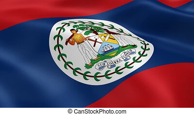 Belizean flag in the wind. Part of a series.