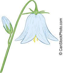 bell-flower., vetorial