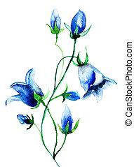 Bell flower, watercolor illustration