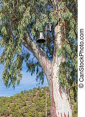 Bell on the eucaliptus tree