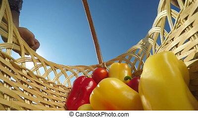 bell peppers in wicker basket