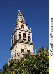 Bell tower of the Cathedral-Mosque in Cordoba, Andalusia, Spain