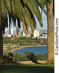 bell tower - Perth bell tower through the palm trees in...
