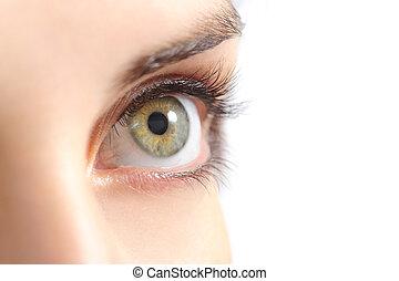 bella donna, occhio, su, verde, chiudere
