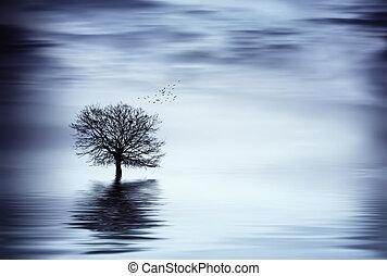 belle arti, albero