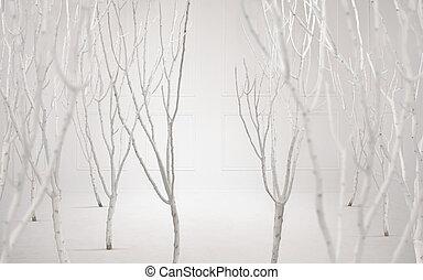 belle arti, foto, di, uno, sognante, sfondo bianco