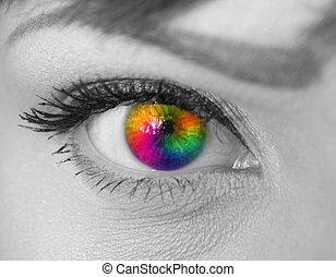 belle femme, oeil, coloré
