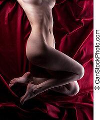 belleza, desnudo, cuerpo, en, rojo