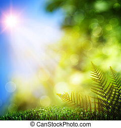 belleza natural, resumen, fondos, bokeh, fern.