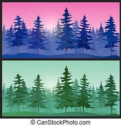 bello, abete rosso, paesaggio, albero