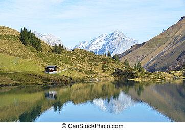 bello, alpino, lake., svizzera