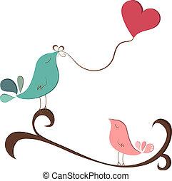 bello, amare uccelli