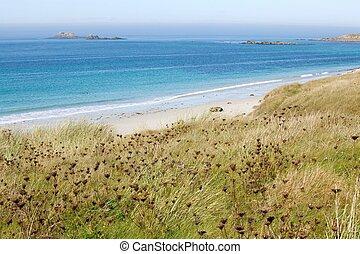 bello, atlantico, spiaggia