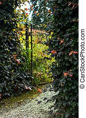 bello, barriere, vecchio, cancello giardino