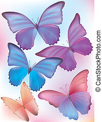 bello, blu, farfalla