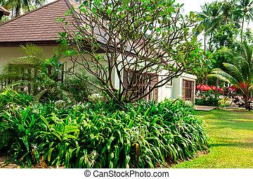 bello, bungalow, comodo