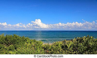 bello, cantante, naturale, florida, isola, nubi, oceano, cumulo, sabbia, calma, visto, vegetazione, dune.