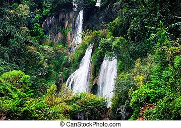 bello, cascata, foresta