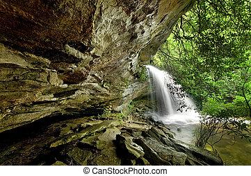 bello, cascata, in, lussureggiante, foresta pioggia