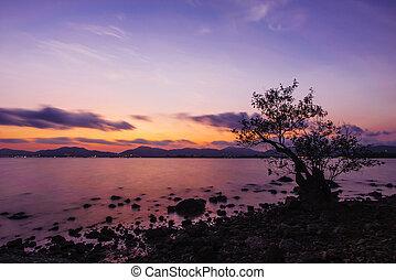 bello, colorare, tramonto, vista